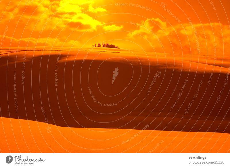 Schneewüste Orangefilter Gegenlicht Wolken Winter Hügel Februar Berge u. Gebirge Harz Sonne. orange Altenau Schatten