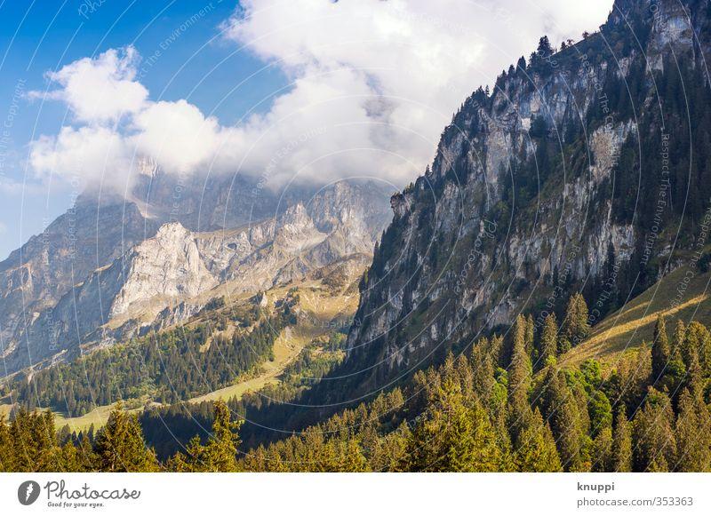 summertime Umwelt Natur Landschaft Pflanze Urelemente Luft Wasser Himmel Wolken Sonne Sonnenlicht Sommer Wetter Schönes Wetter Nebel Wärme Baum Feld Wald Felsen