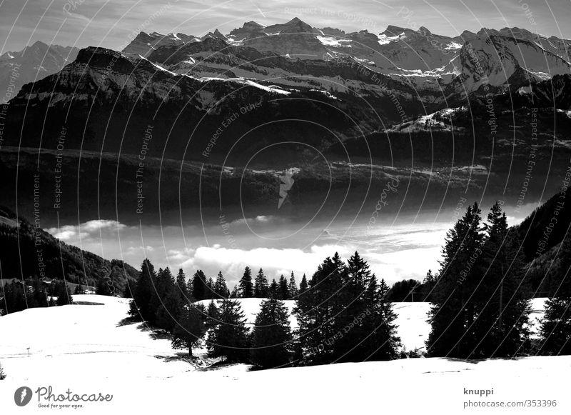 into the Wild Himmel Natur Wasser weiß Pflanze Sonne Baum Landschaft Wolken Winter schwarz Wald Umwelt Berge u. Gebirge Wiese Schnee