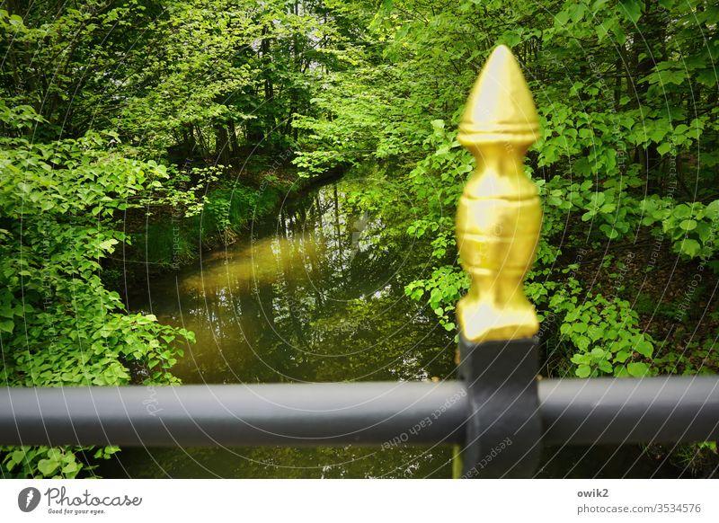 Grün und golden Natur draußen Außenaufnahme Bäume laub blätter Blätterdach Bach Wasser fließend still Idylle Brücke Pfeiler unscharf vergoldet Metall Landschaft