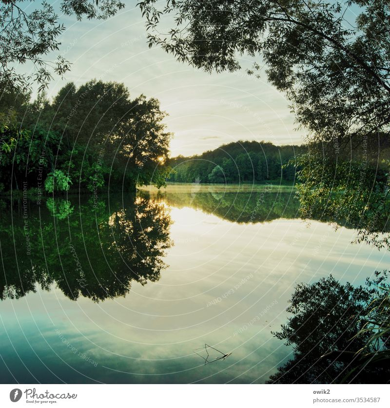 Sonne unter See Seeufer Wald Himmel Idylle Bäume Sonnenlicht Sonnenuntergang Wasseroberfläche Wasserspiegelung Reflexion & Spiegelung friedlich windstill Weite