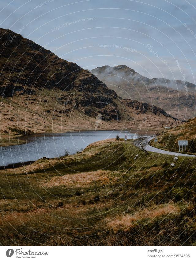 Straße am See in den Highlands von Schottland Schafe Natur Landschaft Menschenleer Großbritannien Außenaufnahme Wolken Berge u. Gebirge Europa Wasser Farbfoto