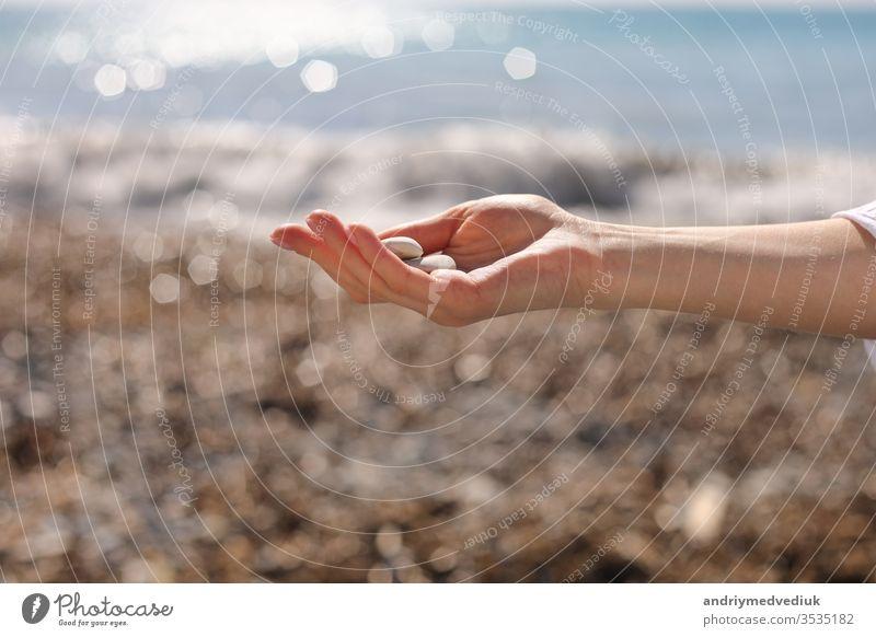 weibliche Hand hält kleine Kieselsteine in der Hand in der Nähe des blauen Meeres auf einem Strandhintergrund, Aufheben von Kieselsteinen am Steinstrand, runde Kieselsteine, Souvenir für den Sommerurlaub, Strandtag, selektiver Fokus