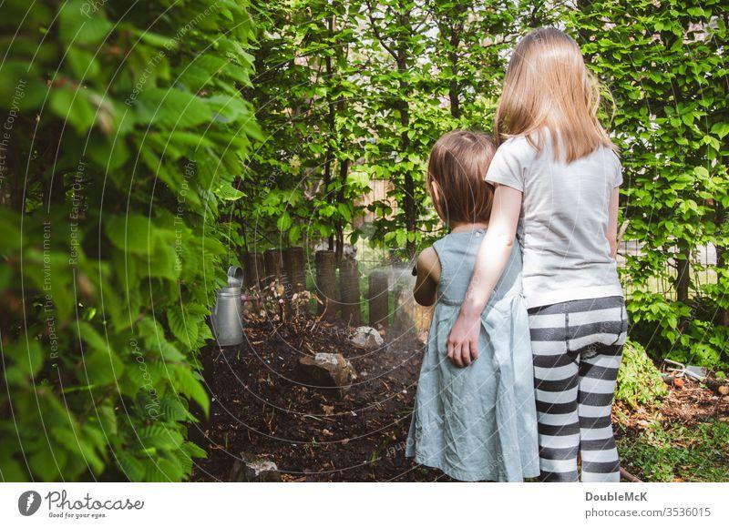 Zwei Kinder gießen umarmend den Garten Mädchen Farbfoto Umarmen zusammen Zusammenhalt Zuneigung Freizeit & Hobby Gartenarbeit Hecke dicht an dicht Spaß haben