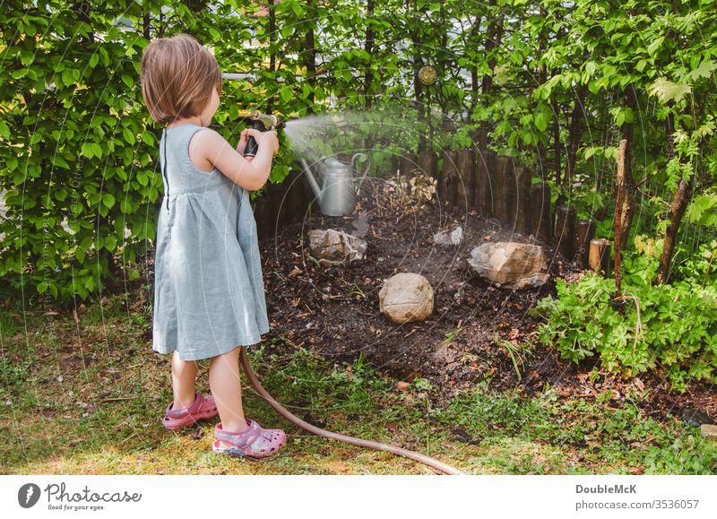 Ein Mädchen gießt den Garten Farbfoto gießen Freizeit & Hobby Gartenarbeit Hecke Spaß haben Engagement engagiert grün Wasserschlauch Außenaufnahme Tag Schlauch