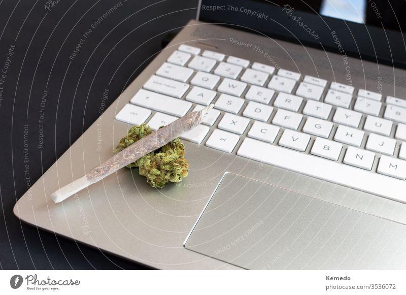 Großer Marihuana-Joint und Cannabis-Knospen auf Laptop auf schwarzem Hintergrund, Konzept von Cannabis und Technologie. Technik & Technologie Computer Gelenk