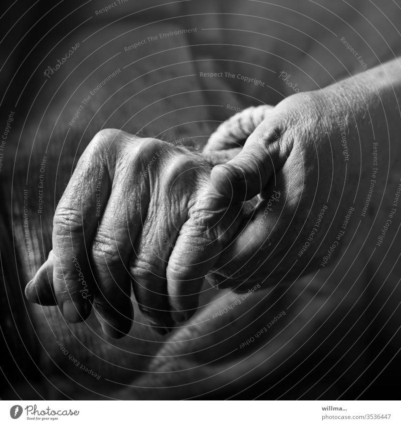 Ich bin für dich da Hände alt Senioren Hilfe Betreuung Fürsorge Trost Mensch berühren Vertrauen Zusammenhalt Zusammensein Geborgenheit 2 Sicherheit Pflegedienst