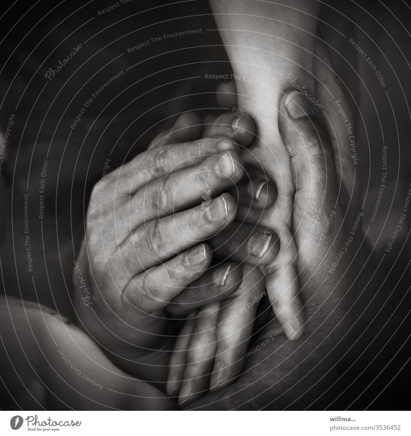 Zusammenhalt und Trost Hände Berührung Nähe Verbundenheit Zusammensein Solidarität unterschiedlich viele Hände symbolisch unterschiedliche Herkunft Vertrauen