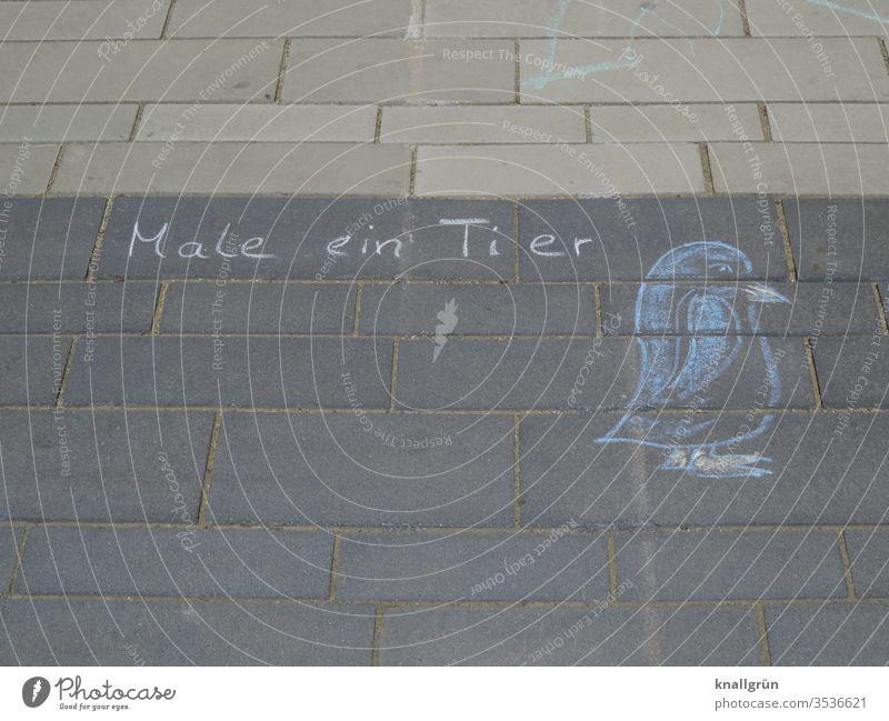 """""""Male ein Tier"""" mit Kreide auf den Gehweg geschrieben, daneben eine Kreidezeichnung eines Pinguins malen Vogel Außenaufnahme Zeichnung Strassenmalerei"""