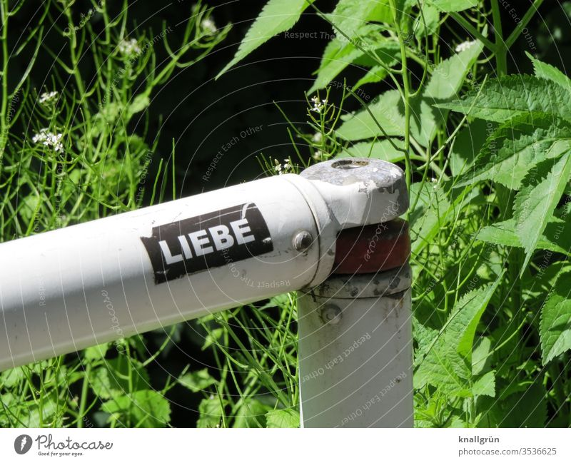 """Aufkleber """"Liebe"""" auf einem Absperrgeländer, im Hintergrund Grünpflanzen Schilder & Markierungen Buchstaben Wort Schriftzeichen Typographie Letter Großbuchstabe"""