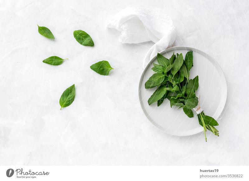 Sortiment frischer aromatischer Kräuter von oben auf weißem Hintergrund Küchenkräuter Lebensmittel organisch grün Bestandteil Minze Oregano Petersilie