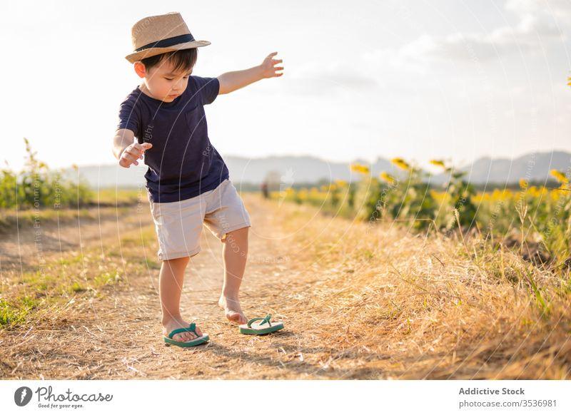 Glücklicher kleiner Junge auf der grünen Wiese heiter Sonnenblume Feld aufgeregt Natur sorgenfrei Hut Kind Lächeln Freude Kindheit froh positiv Landschaft