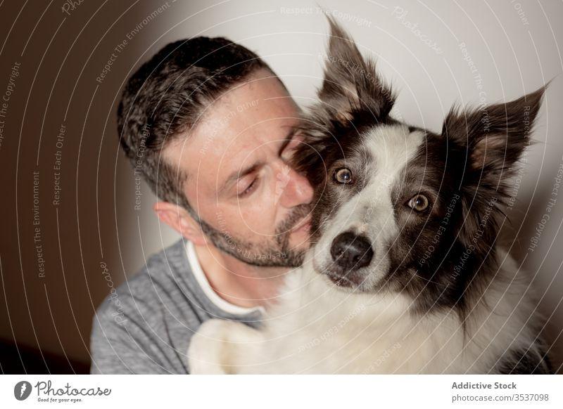 Bärtiger Mann verbringt Zeit mit bezauberndem Pelzhund zu Hause aufwenden Haustier Hund Umarmung Kuss bester Freund heimwärts Border Collie Zusammensein