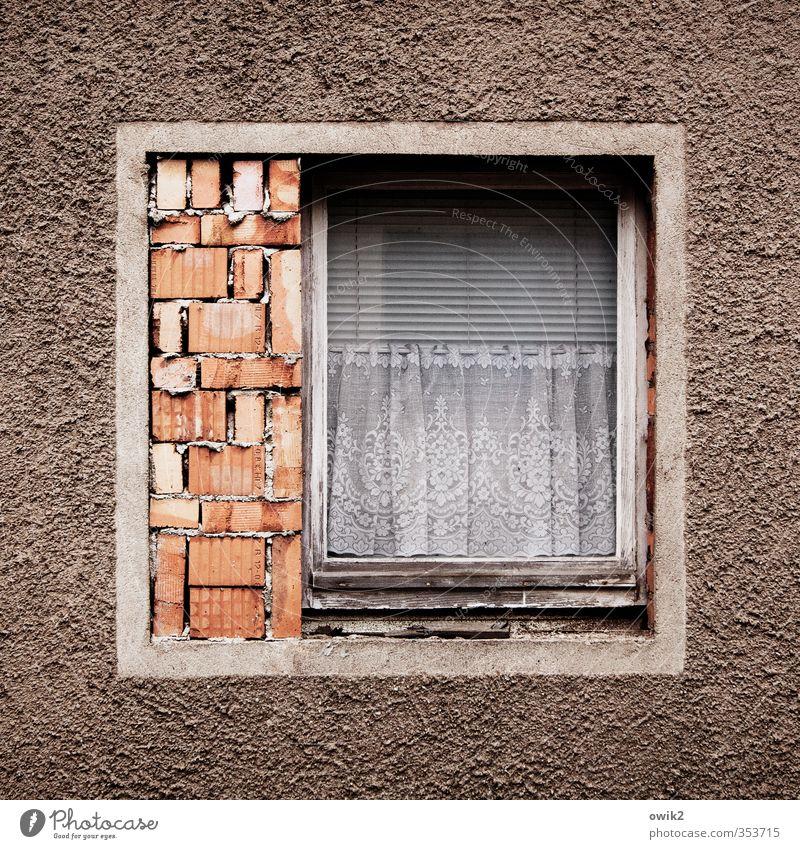 Putzmittel sparen Haus Gebäude Mauer Wand Fassade Fenster Stein Holz Glas Backstein alt Armut eckig einfach fest einzigartig trashig Ordnungsliebe sparsam offen