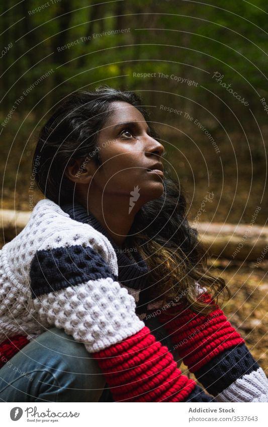 Ruhige Indio-Frau im Herbstwald Wald Barfuß Boden lässig Kniebeuge Windstille Holz ruhig ethnisch Inder hinduistisch Gelassenheit emotionslos Pullover Jeanshose