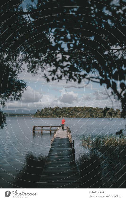 #AS# Seeidylle Neuseeland Natur abgeschieden Wald Idylle Abgeschiedenheit wandern Wanderung Holzsteg Wasseroberfläche Abenteuer Steg stegbretter Wanderausflug