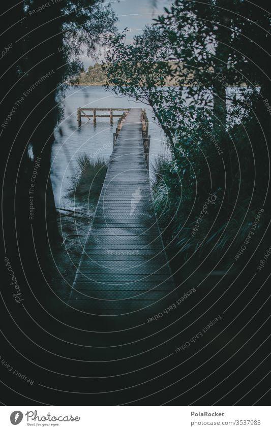 #AS# Am Ende des Pfads Steg stegbretter Wasser See Holzsteg Wanderung wandern Abenteuer Wasseroberfläche Idylle Abgeschiedenheit abgeschieden Wald Natur