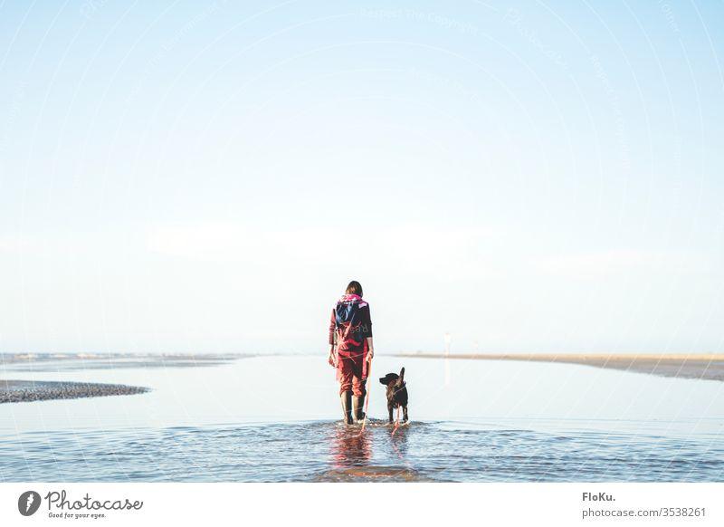 Frauchen geht mit Labrador im Wattenmeer spazieren Nordsee wattenmeer priel wasser nordseeküste himmel sonnenschein hund frau labrador wanderung wattwandern