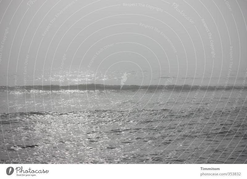 Nordsee erwacht. Himmel Natur Ferien & Urlaub & Reisen Wasser Meer ruhig Umwelt Gefühle Küste grau natürlich Wellen Nebel ästhetisch Dänemark