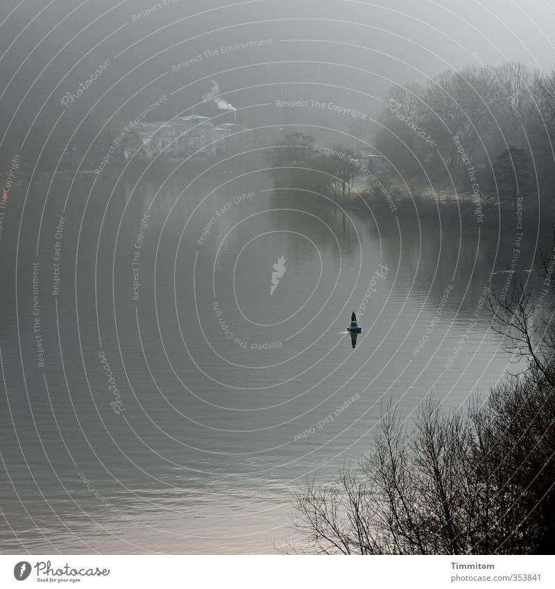 Ein neuer Morgen. Umwelt Natur Wasser Nebel Pflanze Baum Sträucher Flussufer Neckar Heidelberg Haus Boje ästhetisch natürlich grau Gefühle ruhig Farbfoto