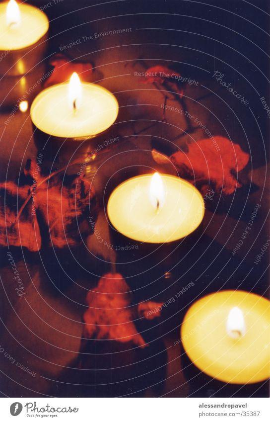 Lichter Blatt Wärme Stimmung Kerze Physik