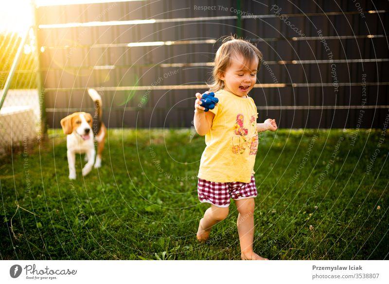 Süßes kleines Mädchen, das an einem Sommertag von einem Beagle-Hund im Garten gejagt wird. 12-18 Monate Kind im Freien bezaubernd Tier Baby Hintergrund