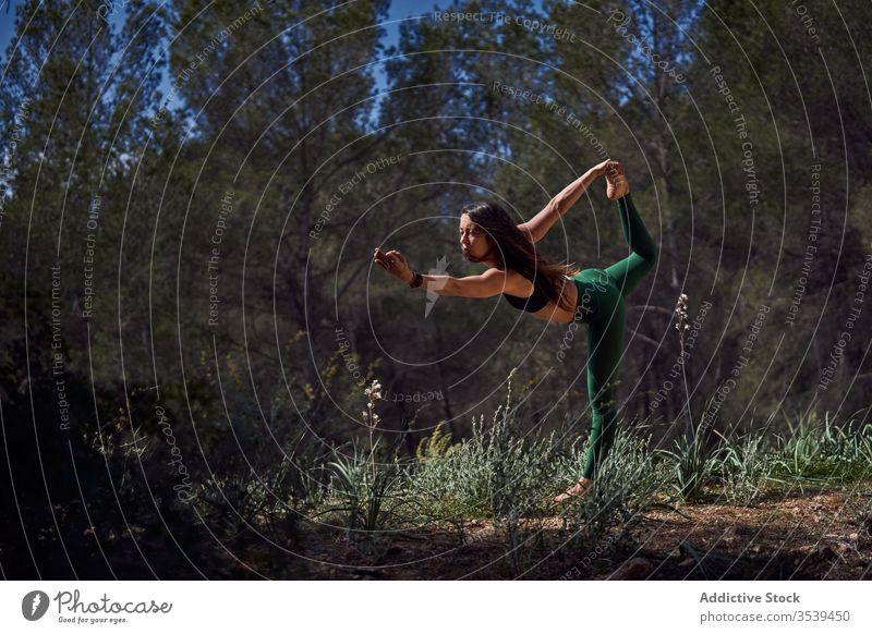 Fitnesssportler praktiziert Yoga im Wald Frau Sportbekleidung positionieren Übung Gleichgewicht Schwalben Harmonie stehen Pose Morgen schlank Gesundheit