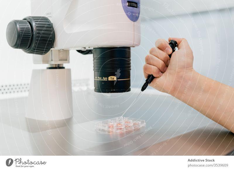 Arzt untersucht Eizelle durch Mikroskop untersuchen ovum Laborschale Klinik spritzen Uniform medizinisch Embryo modern Medizin Krankenhaus professionell