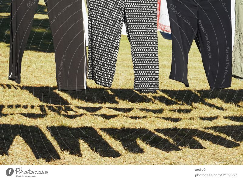 Jacke wie Hose Wäsche hängen Waschtag Hosen Schatten Sonnenlicht Muster trocknen Wäscheleine Farbfoto Sauberkeit Außenaufnahme Häusliches Leben aufhängen