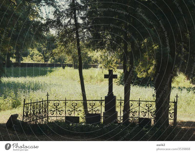 Trauerfall Friedhof Grab Kreuz historisch alt früher Vergangenheit Traurigkeit Abschied Tod Vergänglichkeit Silhouette Schatten Sonnenlicht Baum Gitter