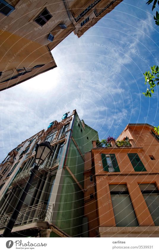 Wochende im Süden II Mallorca Urlaub Altstadt Fassade mediterran Fenster Architektur Wand alt Haus Balkon Mauer Menschenleer Fensterladen Sommer
