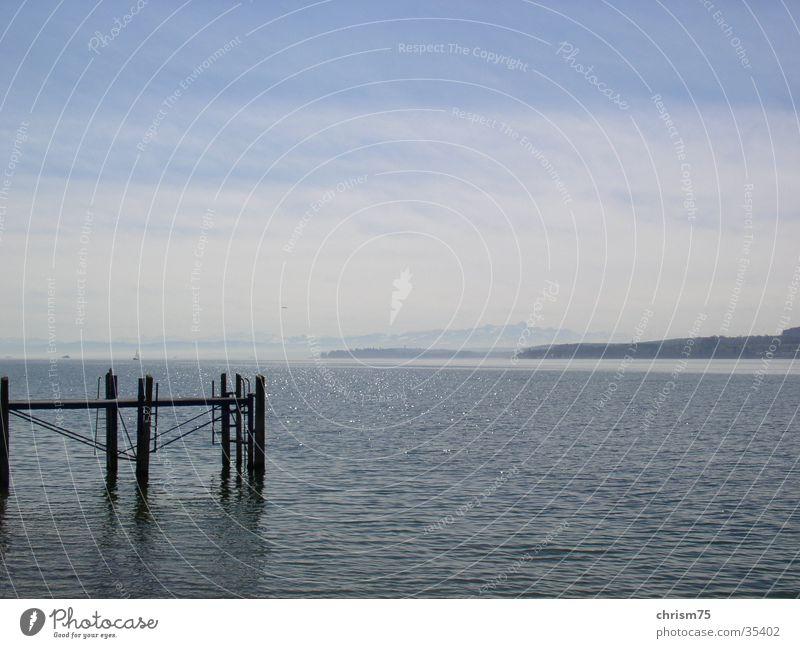 Bodensee Natur Wasser ruhig Denken Landschaft Aussicht
