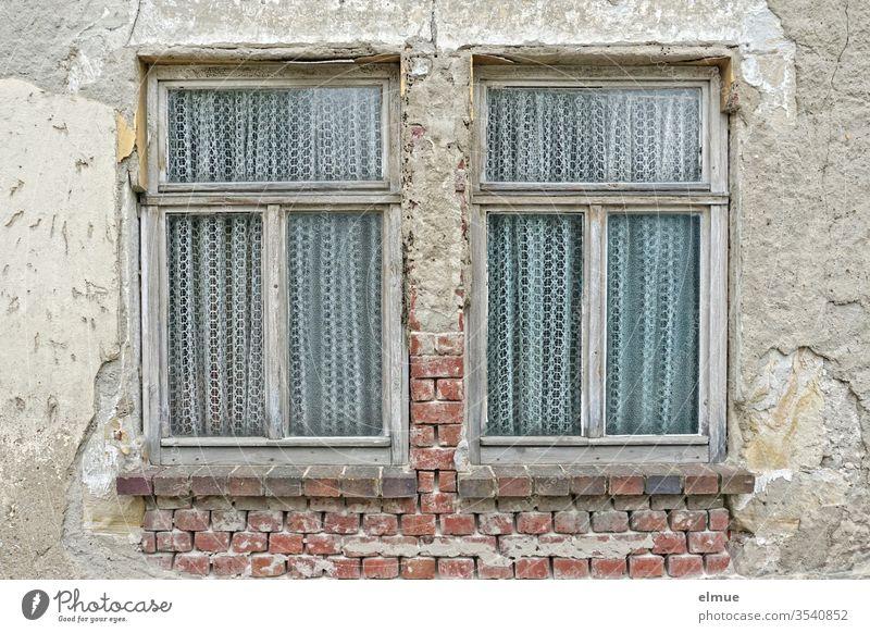 zwei alte, ganze Holzfenster mit Gardinen in einer maroden Wand Fenster Armut Verfall Spekulationsobjekt Ausblick Ziegel verkommen baufällig Altbauwohnung Putz