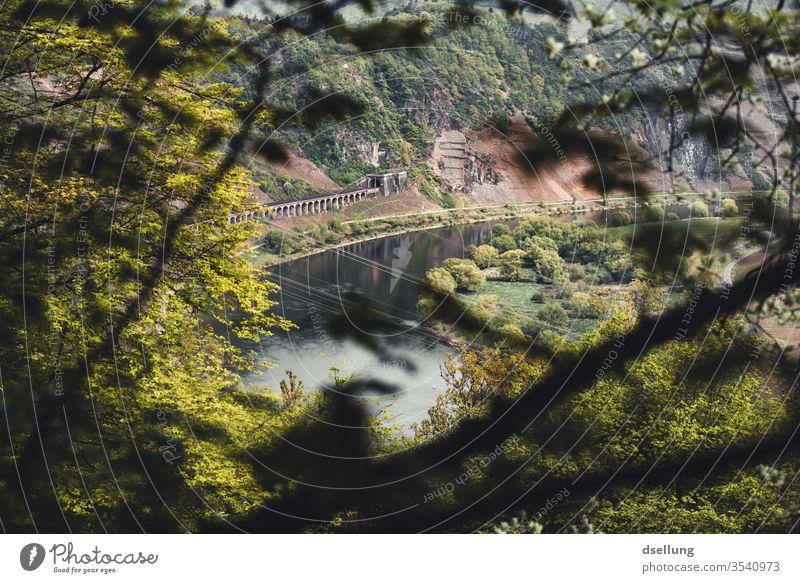 Ausblick auf die Mosel und grüne Hänge mit malerischer Eisenbahnstrecke Moseltal Hang Felsen Panorama Aussicht Bäume Wälder Kanonenbahn Reflexion & Spiegelung