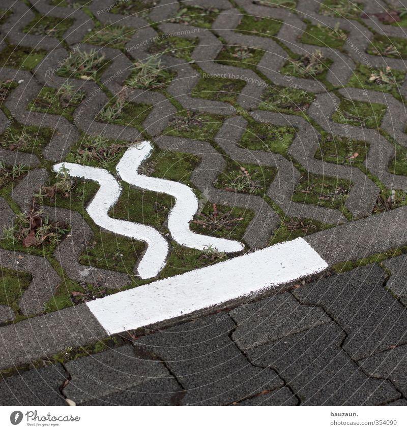 xx|. Garten Gras Moos Parkplatz Autofahren Straße Wege & Pfade Rasengitter Rasengitterstein Pflastersteine Stein Beton Zeichen Schilder & Markierungen