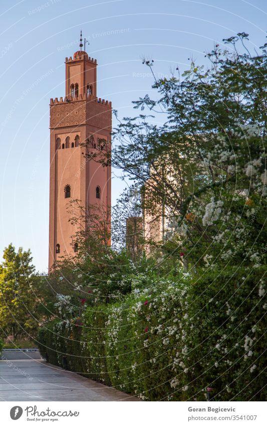 Koutubia-Moschee in Marrakesch Detailaufnahme Religion Kirche Architektur Gebäude grün arabisch Islam Marokko Minarett Marokkaner muslimisch reisen blau Himmel