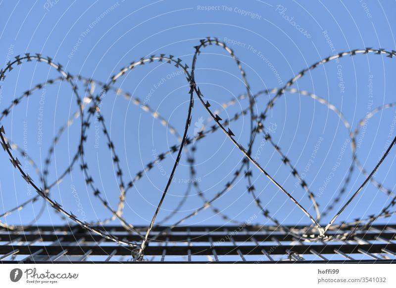 """Stacheldraht vor blauem Himmel Stacheldrahtzaun"""" Natodraht Maschendrahtzaun Barriere Borte Justizvollzugsanstalt Metall Schutz Zaun Verbote Folter"""