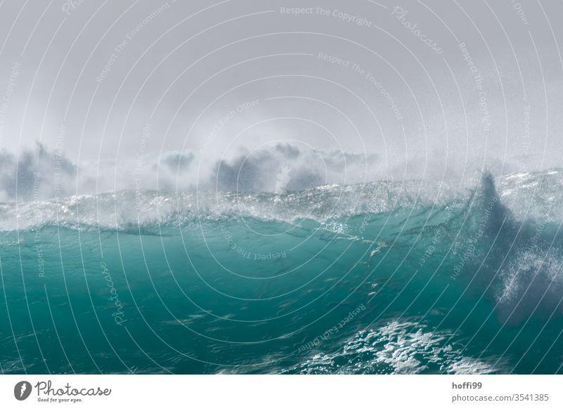 fette Welle im Atlantik bricht sich mit starker Gischt - Sommer ! Brandung Wellen Meer türkis ästhetisch Wasser Flüssigkeit Energie frisch Cabo Verde Sonne hell