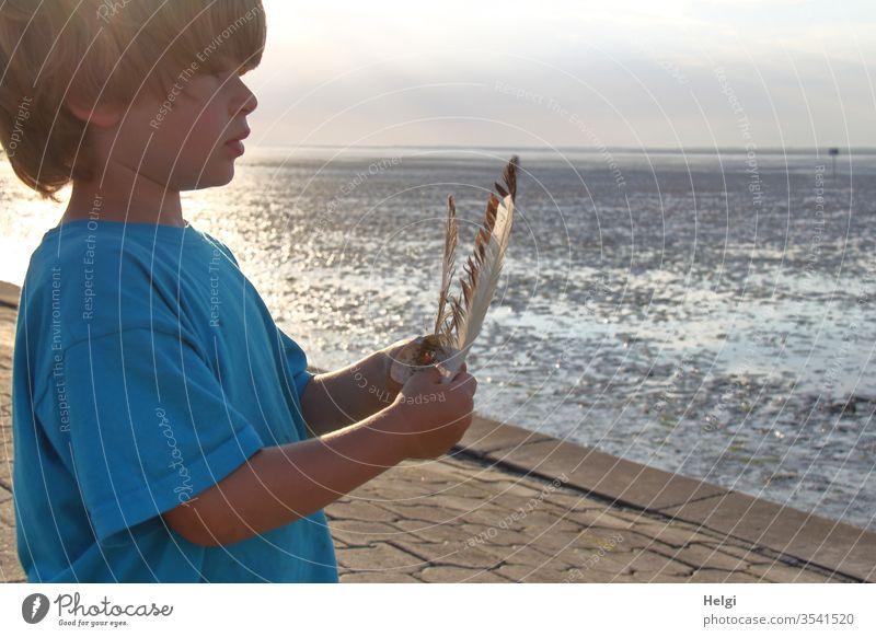 abends an der Nordsee - Junge steht bei Ebbe in der Abendsonne am Watt, hält Federn in den Händen und schaut in die Ferne Mensch Kind Wattenmeer Küste