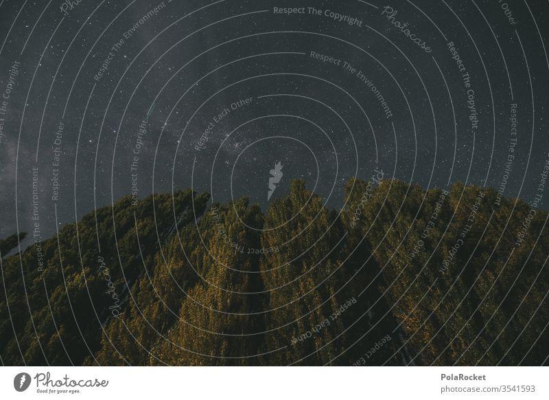 #As# Nacht Und Bäume Und So Langzeitbelichtung Nachthimmel Neuseeland Neuseeland Landschaft Wanaka Stern Sternenhimmel sternenklar Sternenhaufen Außenaufnahme