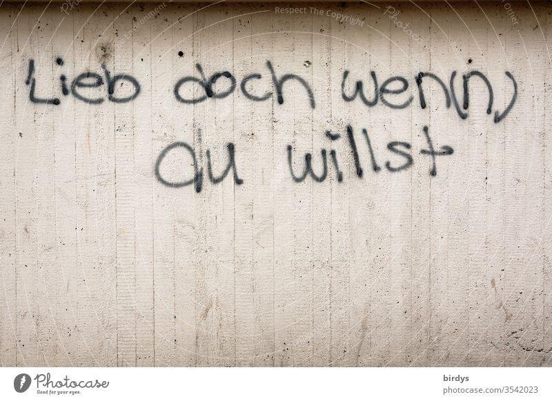 Lieben wen du willst oder wenn du willst. Auf Beton gesprühter doppeldeutiger Satz, Graffiti lieben Aufforderung Mut machen Sexuelle Neigung Pansexuell