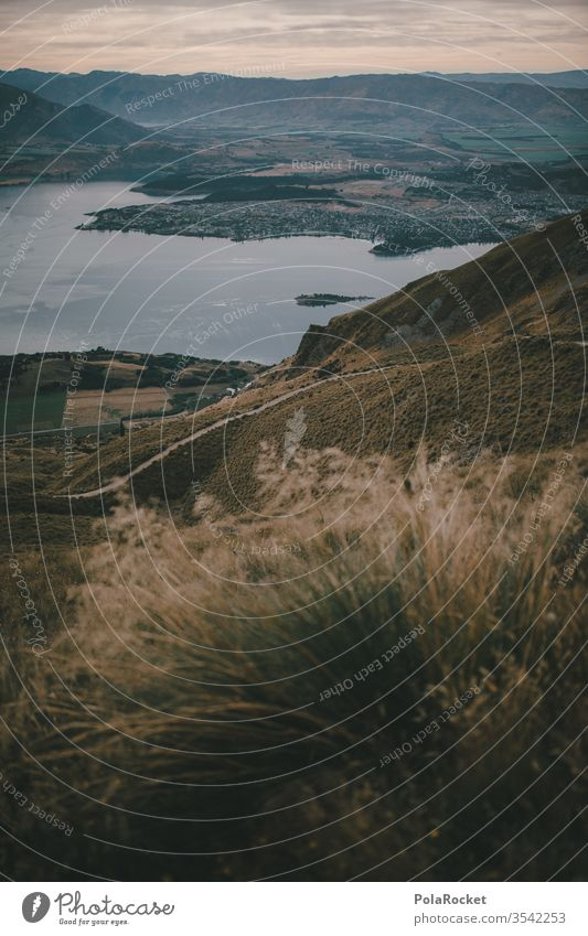#As# Blick ins Tal Neuseeland Neuseeland Landschaft Berge u. Gebirge wandern Wanderung Natur Außenaufnahme Farbfoto Menschenleer Umwelt Himmel