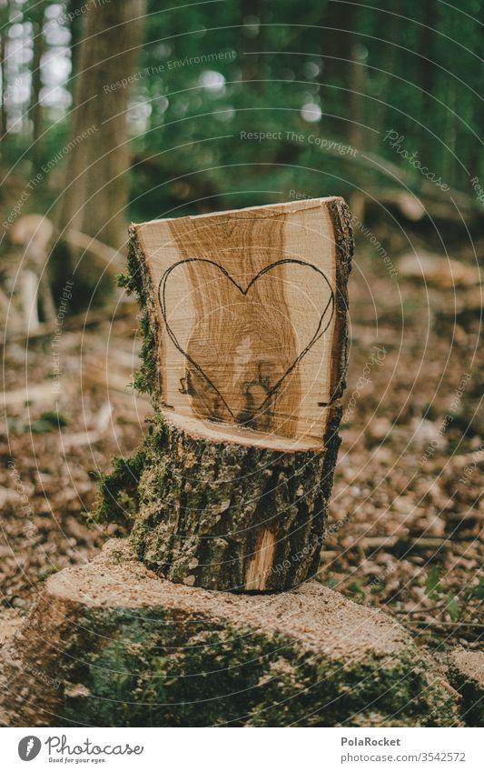 #S# Waldliebe III Liebe Herz Naturliebe Naturschutzgebiet naturverbunden Naturerlebnis Umwelt Menschenleer schnitzen Handwerk Baumstamm herzförmig Bäume