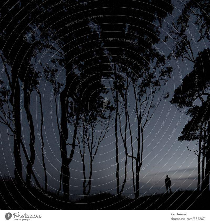 alone in the dark Mensch maskulin Junger Mann Jugendliche Erwachsene 1 18-30 Jahre 30-45 Jahre Natur Landschaft Himmel Nachthimmel Stern Wald Küste Strand