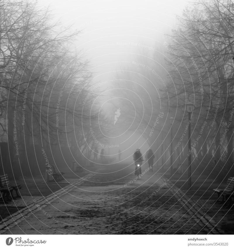 Ein Radfahrer an einem Herbsttag im Park schwarz und weiß schön Berlin Fahrrad Biker Großstadt kalt kalte Temperatur Arbeitsweg Zyklus Fahrradfahren Tag Regie