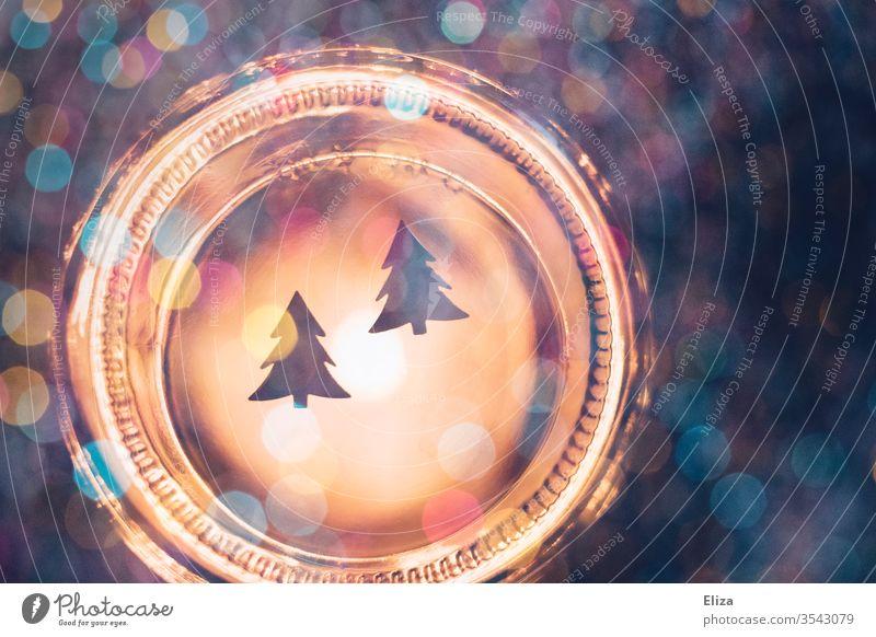 Weihnachten. Zwei Tannenbäume vor leuchtendem Glas mit buntem Bokeh. Fest festlich Weihnachtsbäume Tannenbaum Christbaum rund kreativ Weihnachten & Advent