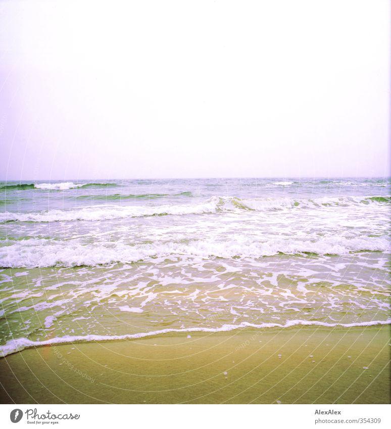 Da ist Fisch drin Natur Ferien & Urlaub & Reisen schön Wasser Sommer Meer Landschaft Erholung Strand Umwelt gelb Ferne Freiheit Sand Horizont Wellen