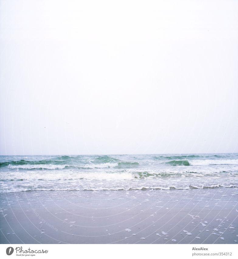 Ostseestrandtag Ferien & Urlaub & Reisen blau grün Wasser weiß Meer Erholung Wolken Strand Umwelt Ferne Leben Bewegung Freiheit Küste Sand