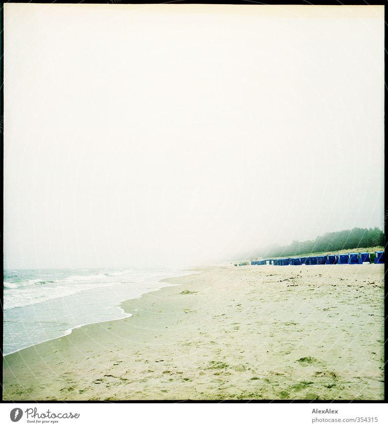 Kurtaxezahlerbelohnungsansicht Ferien & Urlaub & Reisen blau grün schön Wasser Baum Erholung ruhig Strand Ferne Freiheit Sand Horizont Stimmung Luft Wetter
