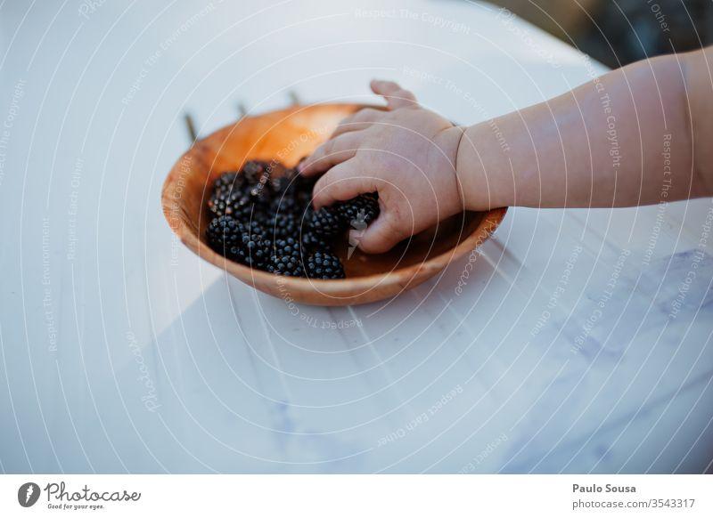 Kind pflückt Brombeeren von Hand Farbfoto Natur Brombeerbusch Außenaufnahme Frucht Beeren lecker grün Menschenleer Pflanze Nahaufnahme Sträucher Tag